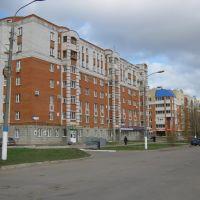 Дом №8 по улице Винокурова  /  House №8 on the Vinokurov street, Новочебоксарск