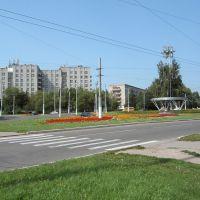у кольца, Новочебоксарск