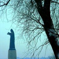 Памятник Мать-Покровительница., Чебоксары