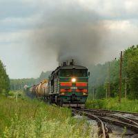 Разъезд 28 км. Тепловоз 2ТЭ10У-0154 с грузовым поездом из Ульяновска, Шемурша