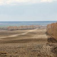Весеннее поле, Шемурша