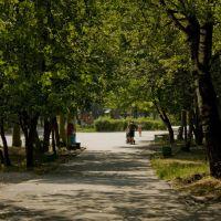 Парк, Шумерля