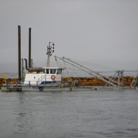 Dredge at Albany., Олбани