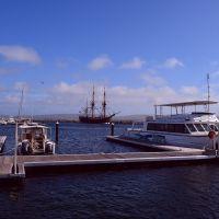 HMB Endeavour in Albany marina, Олбани