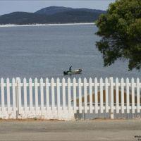 Whale Wharf, Tondirrup NP,  Western Australia, Олбани