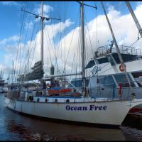 Ocean Free....© by leo1383, Каирнс