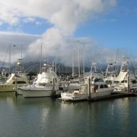 Marina in Cairns, Каирнс