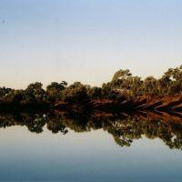 Thompson River, Longreach, Queensland, Калундра