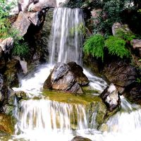 Japanese Garden, Rockhampton Botanic Gardens, Рокхамптон