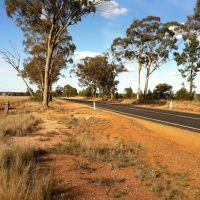 Tullamore, NSW, Australia by Dr Muhammad J Siddiqi, Албури