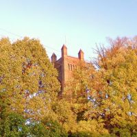 Armidale , spire amongst the autumn tree tops ..., Армидейл