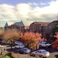 Armidale , autumn morning with contrasting shadows ..., Армидейл