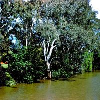 Wollundry Lagoon Wagga Wagga NSW Australia, Вагга-Вагга