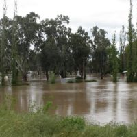 Flood October 2010: Wagga Beach Caravan Park (without vans and under water), Вагга-Вагга