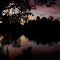 Wollundry Lagoon: Sunset Silhoutte, Вагга-Вагга