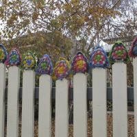A fine example of Guerrilla Knitting commited by Wagga Waggas own Guerrilla Knitter!, Вагга-Вагга