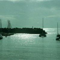 harbour, Воллонгонг