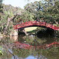 Wollongong Botanic Gardens, Воллонгонг