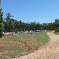 Tullamore - Cemetery - 2014-01-14, Дуббо-Дуббо