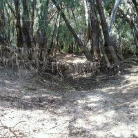 Macquarie River Mumblebone Breakout by Dr Muhammad J Siddiqi State Water Corp, Коффс-Харбор