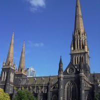 悉尼大教堂 Sydney Cathedral, Мельбурн