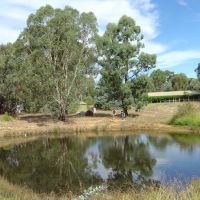 Andrews Yabby Pond (before the drought), Милдура