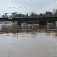 Traralgon Floods June 2013, Траралгон