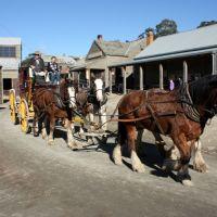 Horse team, Балларат