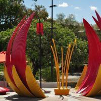 Lotus Plant ?? - Chinese Gardens, Bendigo, Бендиго