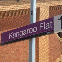Kangaroo Flat Railway Station Platform 1, Водонга