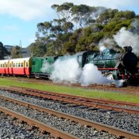 Don River Railway, Devonport.......515, Девонпорт