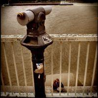 la bouée grise - antwerpen, Антверпен