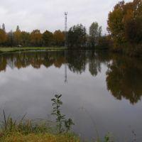 a pond near Destelbergen, Алост