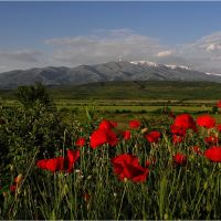 Boboshevo, Bulgaria, Боровец