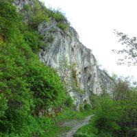 Планински път, Враца