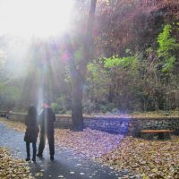 Lovech in autumn :), за Иван Ботев, Ловеч