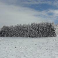 Зимен пейзаж, Михайловград