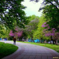 Русе - парка на Възрожденците, Русе
