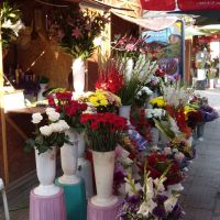 The flower market, Русе