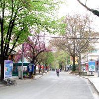 Svilengrad.jpg, Свиленград