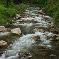 """Stara Reka"" River 07.05.10, Карлово"