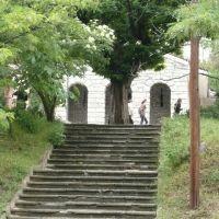...към Тракийската гробница, Казанлак