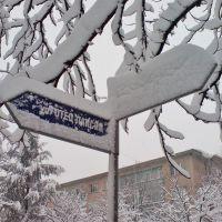 Winter in Dimitrovgrad, Димитровград