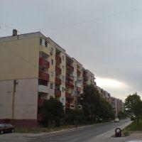 Town of Dimitrovgrad, Димитровград