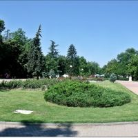 City park / Градския парк, Димитровград