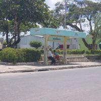Ponto de ônibus em Arapiraca, Арапирака