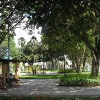 Praça Luiz Pereira Lima, Arapiraca, Арапирака
