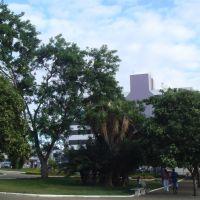 Praça do Gil, o verde., Виториа-да-Конкиста