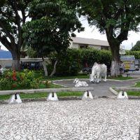 Praça do Boi 03, Итапетинга