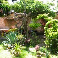 quintal da casa de Pablo Silva Moura, Санта-Мария